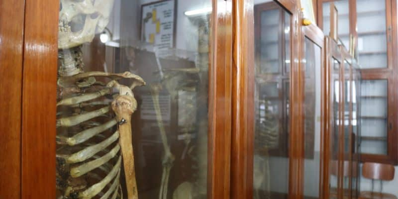Death Museum or Siriraj Medical Museum, Bangkok