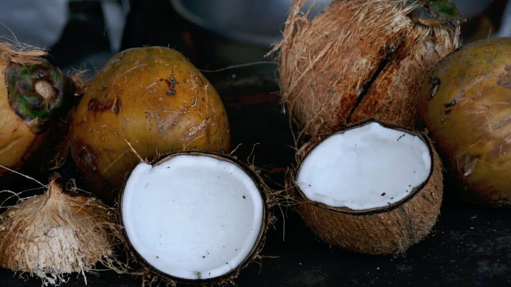 Fresh coconuts - Credit Zibik